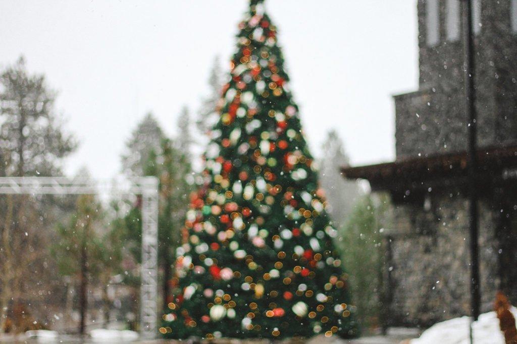 Hamilton Christmas Market.Gore Park Will Have A Ferris Wheel This December